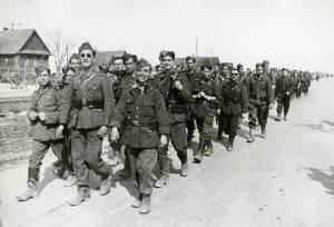 columna de la División azul en marcha
